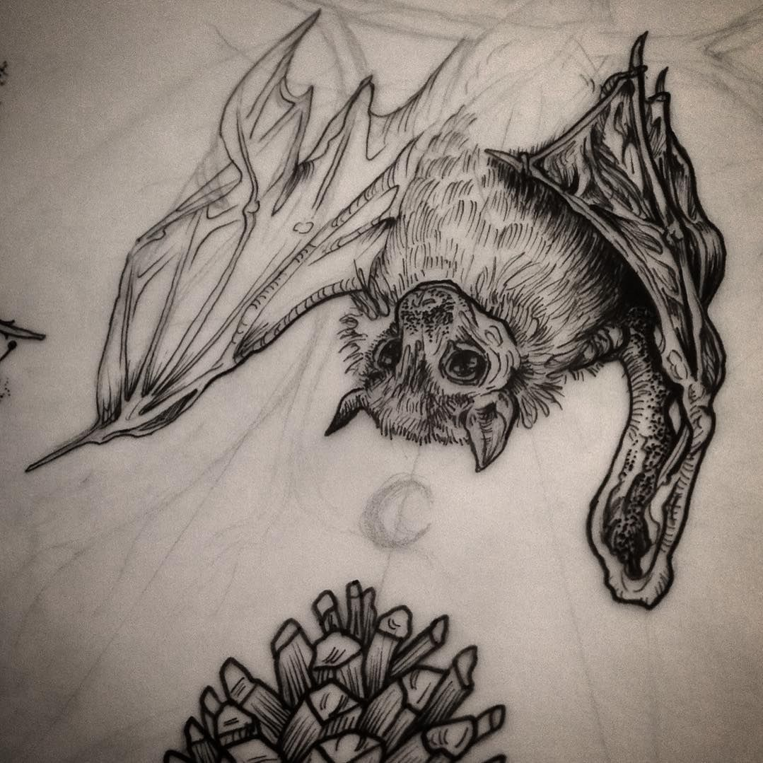 sketch of a bat