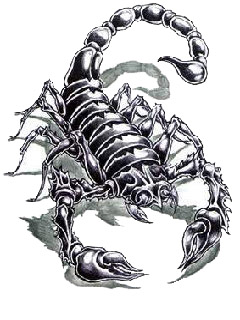 sketch of a scorpion