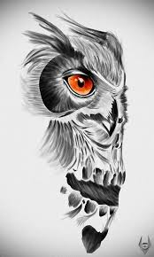 sketch of an owl turning into a skull