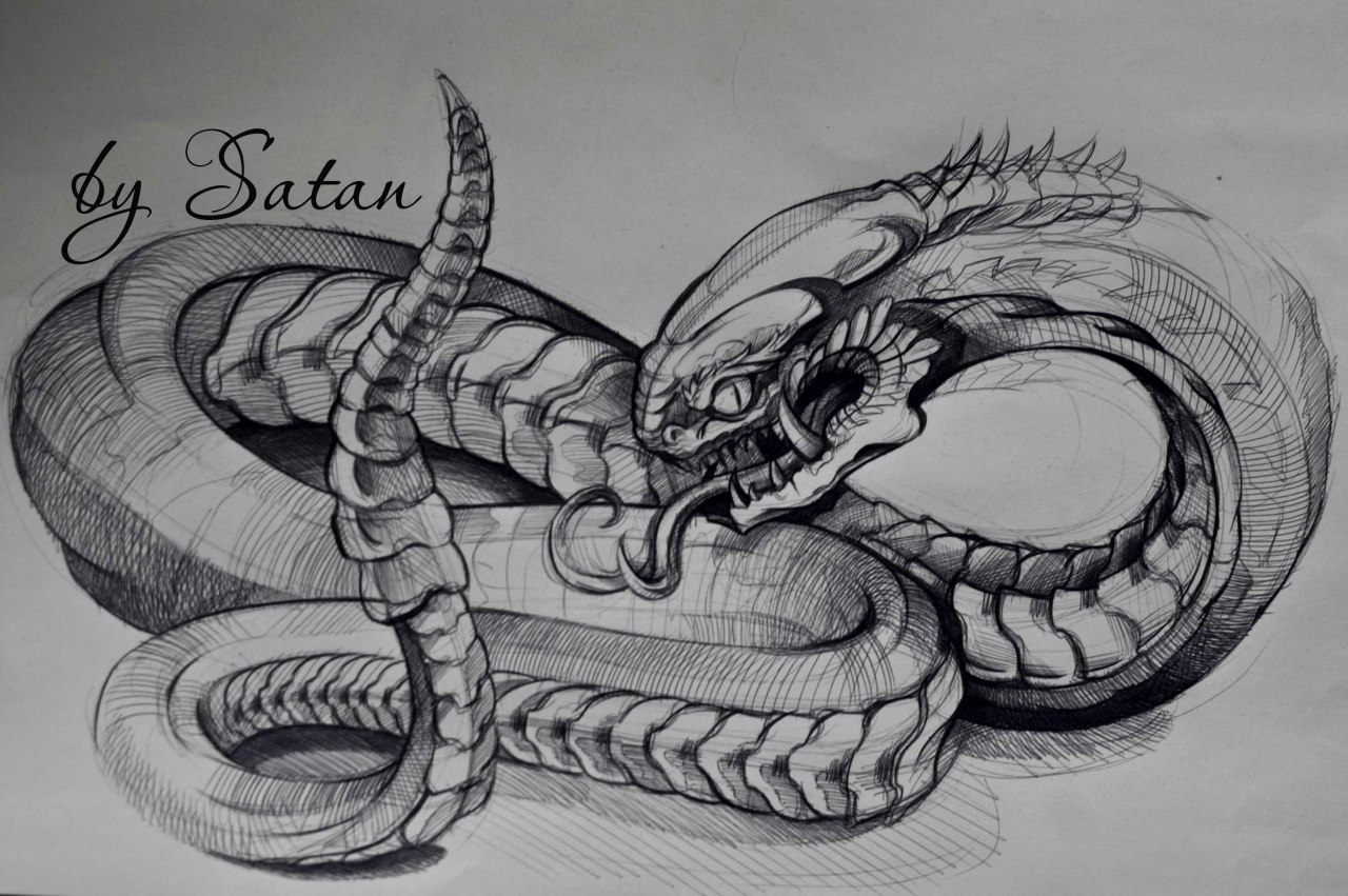 sketch for future tattoo, Snake