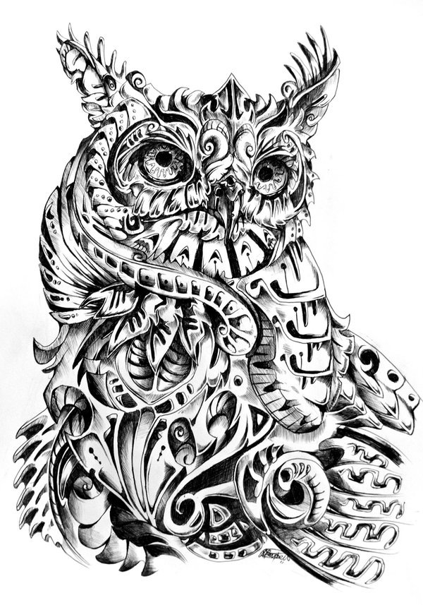 Owl from various mechanisms