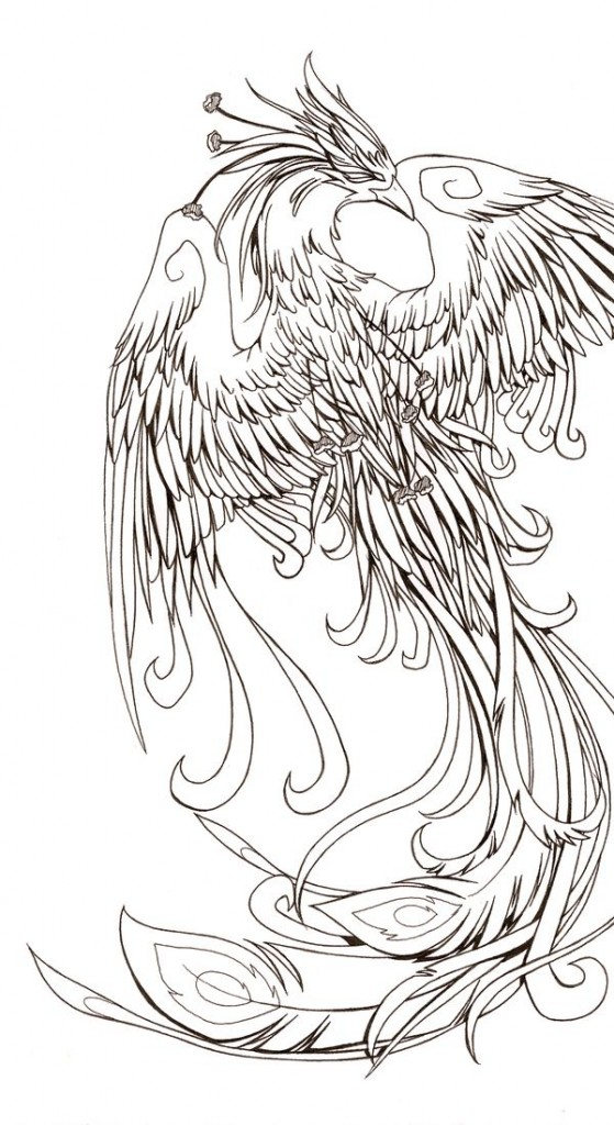 Sketch of a phoenix bird