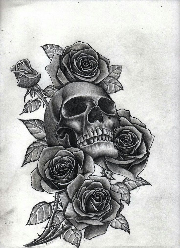 Sketch of tattoo - skull with roses