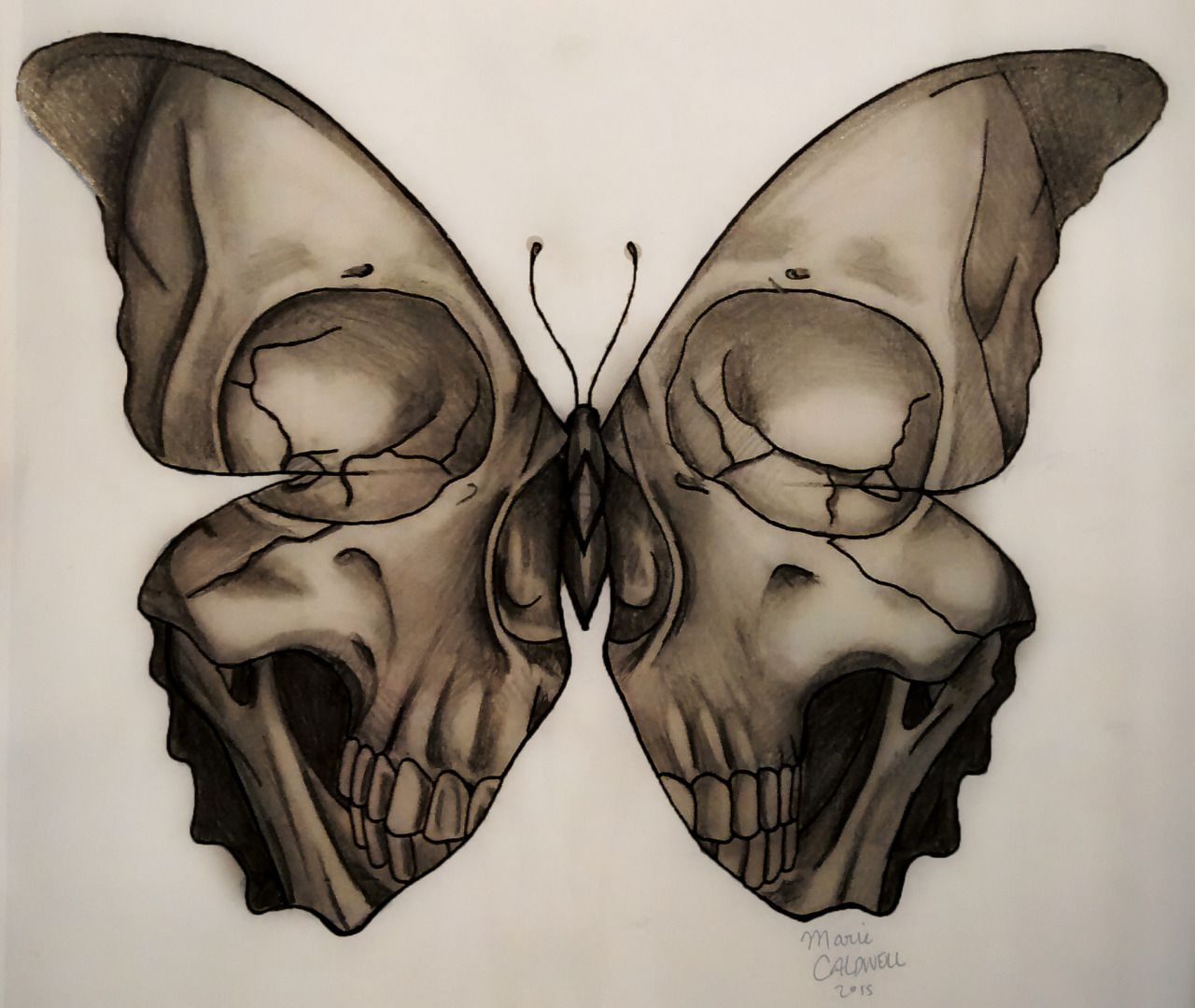 sketch for tattoo - butterfly death