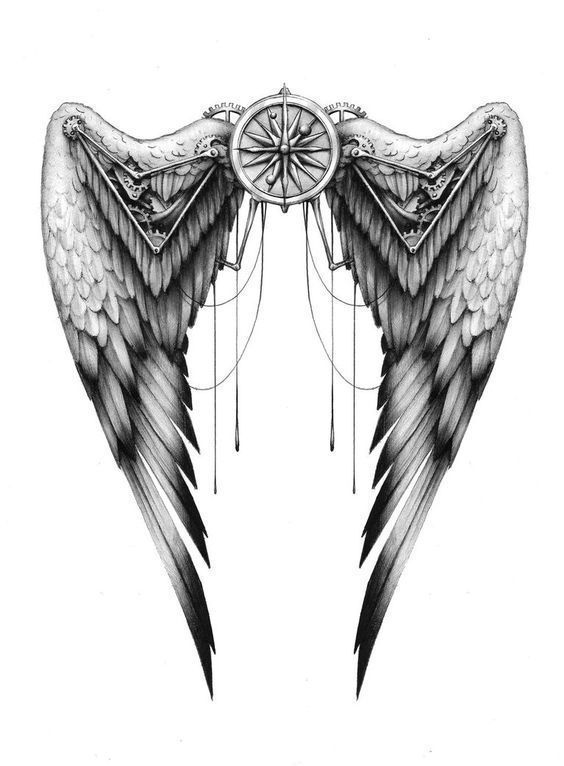Sketch of Wings