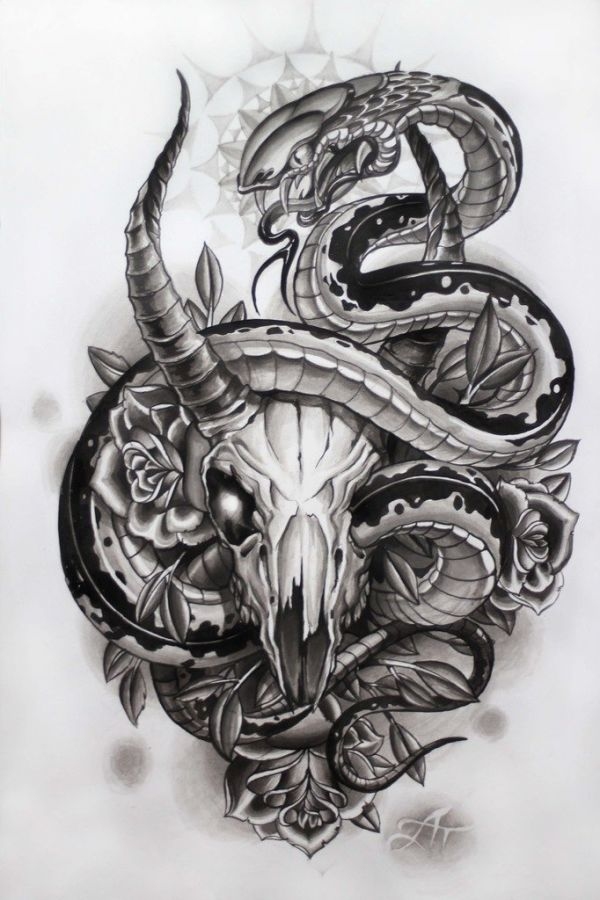 Sketch of a tattoo - for the back, skull of a goat with a snake