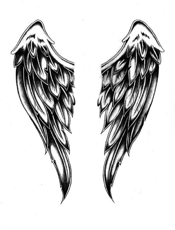 Sketch for tattooing Wings