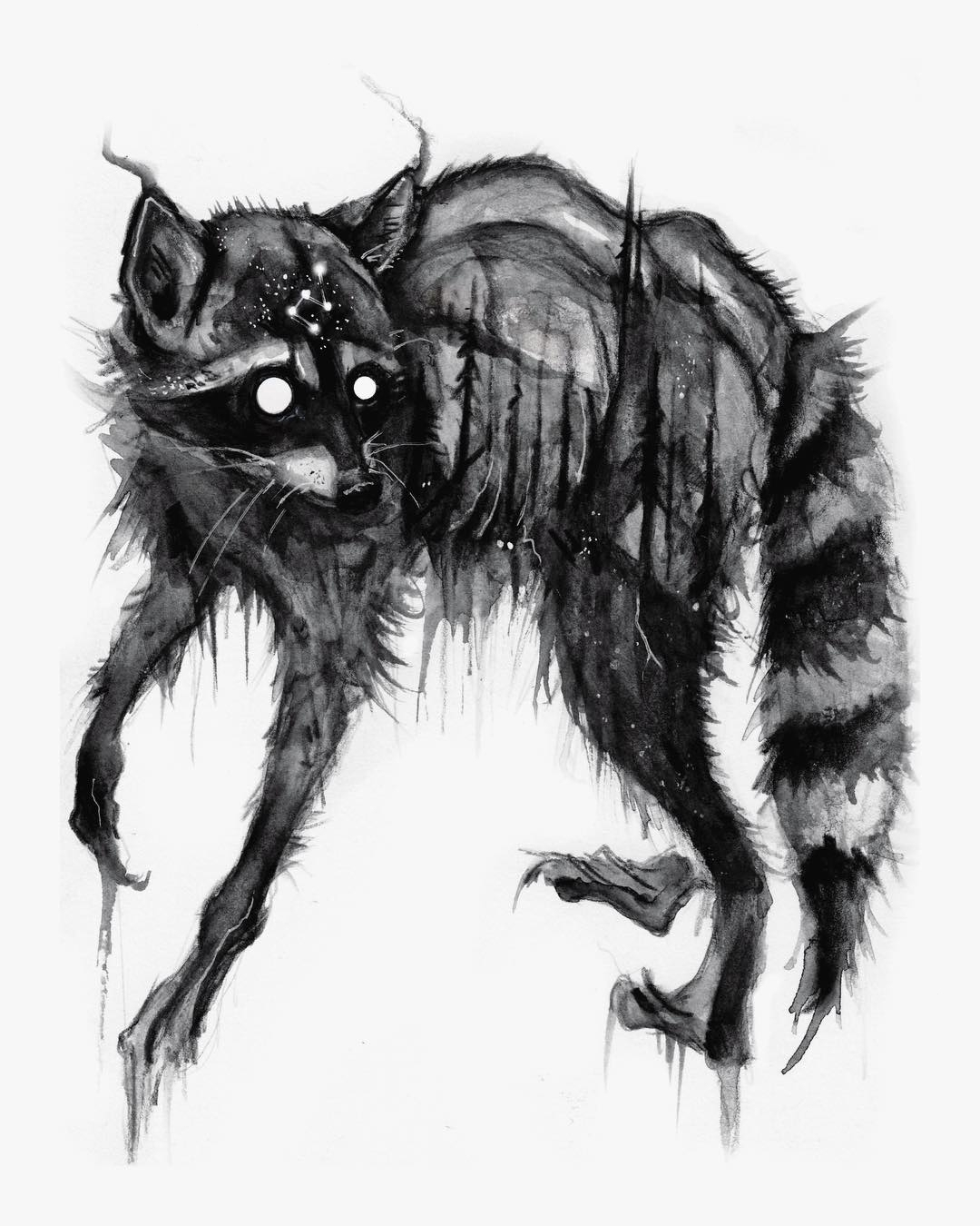 raccoon tattoo sketch