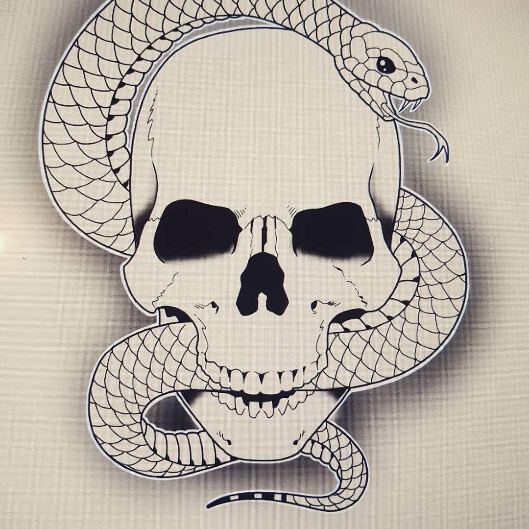 sketches of a skull with a snake
