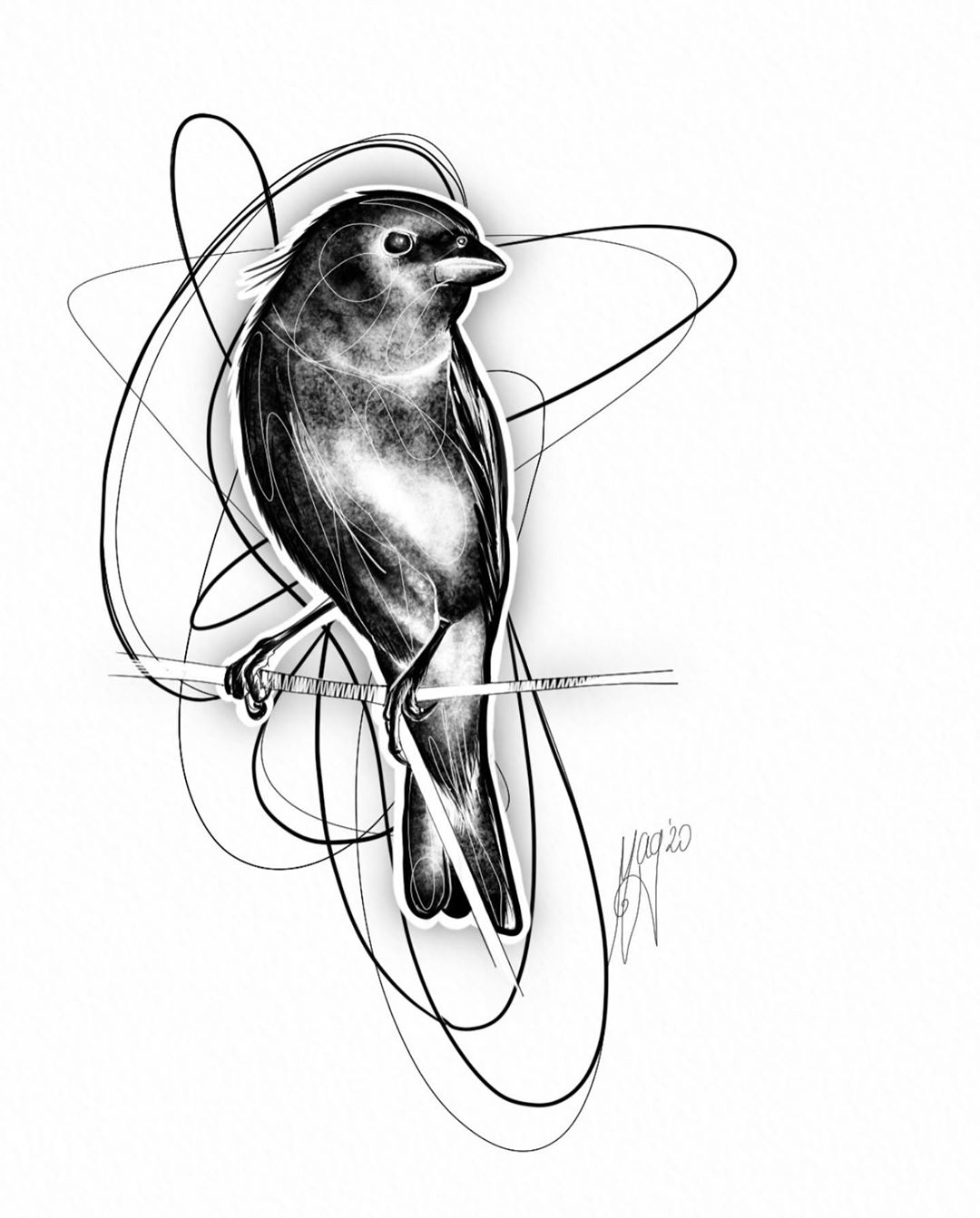 drawings of birds for tattoos